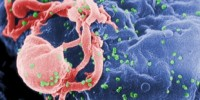 image: HIV Study Named Year's Best