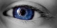 image: An Eye for Stem Cells