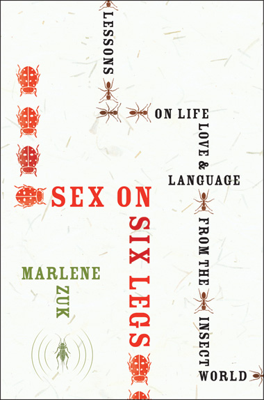 image: Book Excerpt from <em>Sex on Six Legs: Lessons on Life, Love, and Language from the Insect World</em>