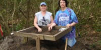 image: Lost Colony DNA