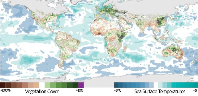 MAPPING DISEASE: This map shows anomalies in sea-surface temperatures and in the Normalized Difference Vegetation Index (NDVI), which quantifies the amount of vegetation cover (based on visible and near-infrared reflectance data from sensors onboard NOAA's polar orbiting satellites), observed globally in January 2007.  The unusually high sea surface temperatures (teal) sustained in the western equatorial Indian Ocean and the central and eastern equatorial Pacific Ocean since the summer of 2006 had caused an anomalous growth in vegetation (purple), in Eastern Africa due to heavy rainfall.