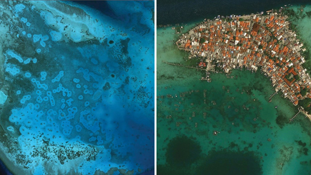 HALOS FROM THE HEAVENS: Rings of bare sand surrounding coral reefs, known as grazing halos, such as the ones in this satellite photo of a Red Sea coral reef (left), are readily visible using Google Earth. A lack of grazing halos around offshore coral reefs—such as the ones in the highly developed Panggang Island off the coast of Jakarta (right)—may signify overfishing of predators that prey on small, reef-dwelling herbivores.