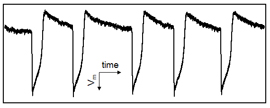 The intracellular action potential signal recorded by a BIT-FET