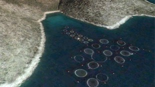 image: Satellites Spy on Fish Farms