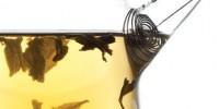 image: Reading Tea Leaves