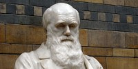 image: Darwin Day Celebrations