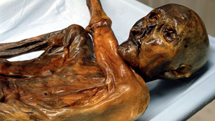 Ötzi the Iceman, discovered in 1991