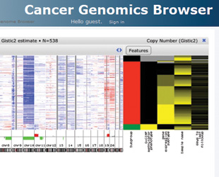 TRACKING CLINICAL ASSOCIATION: The UC Santa Cruz Cancer Genomics Browser displays side-by-side heat maps of genomic data (left), such as gene expression and copy number changes, and clinical data (right) for a long list of cancer data sets, along with a feature that enables researchers to look for genomic variations that correlate with clinical outcomes.