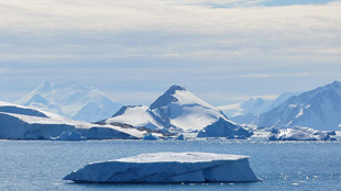 image: Antarctic Invasion