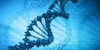 image: How Predictive are Genomes?