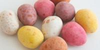 image: Cretaceous Easter Eggs