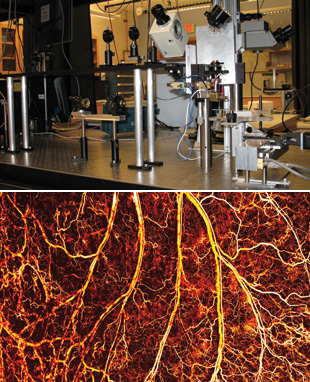THE SOUND OF CANCER: Lihong Wang of Washington University in St. Louis uses a photoacoustics set up like this one to image tumors and their vasculature to depths of 5 cm.