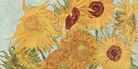 image: The Science of Van Gogh