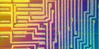 image: Bacterial Computing?