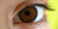 image: Bionic Eye Sees the Light