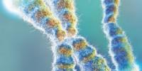 image: Telomeres in Disease