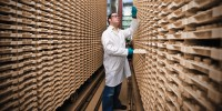 Novartis Institutes for BioMedical Research (#17) researcher searching the company's compound archive in Basel, Switzerland.