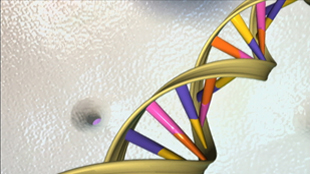 image: Court Rules Gene Patents Valid