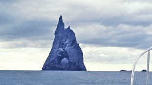 ISLAND FORTRESS: Ball's Pyramid, a rocky volcanic remnant jutting out of the Pacific Ocean, where the stick insect was rediscovered