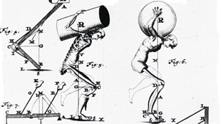 image: The Mechanical Body