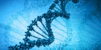 image: Opinion: What Is the Human Genome?