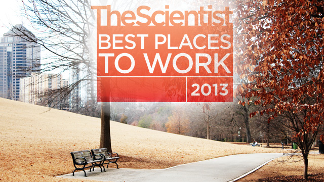 image: Best Places to Work Surveys Open