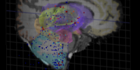 image: Mind Map