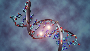 image: Forensic Law Turns to Epigenetics