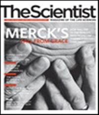 The Scientist May 2006 Cover