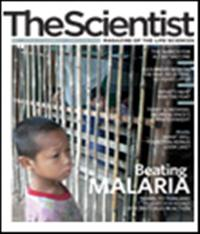 The Scientist December 2006 Cover