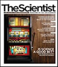The Scientist July 2007 Cover