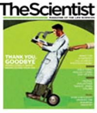 The Scientist May 2008 Cover