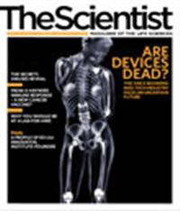 The Scientist October 2008 Cover