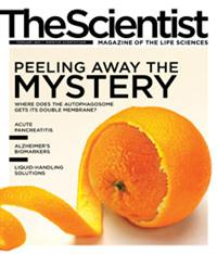 The Scientist February 2012 Cover