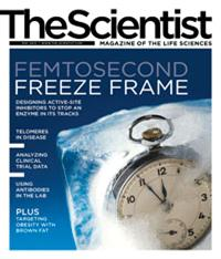 The Scientist May 2012 Cover