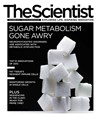 The Scientist December 2012 Cover