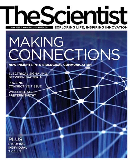The Scientist May 2013 Cover
