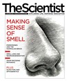 The Scientist October 2013 Cover