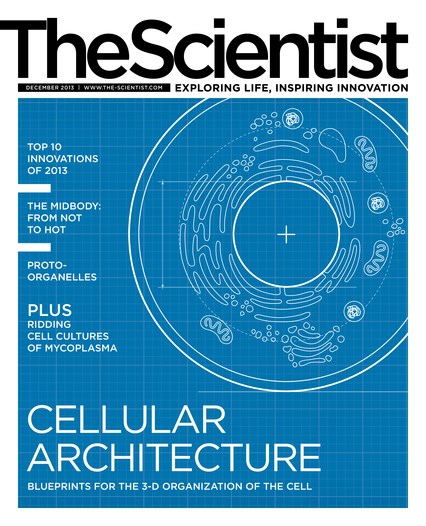 The Scientist December 2013 Cover