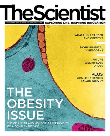 The Scientist November 2015 Cover