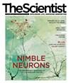 The Scientist November 2016 Cover