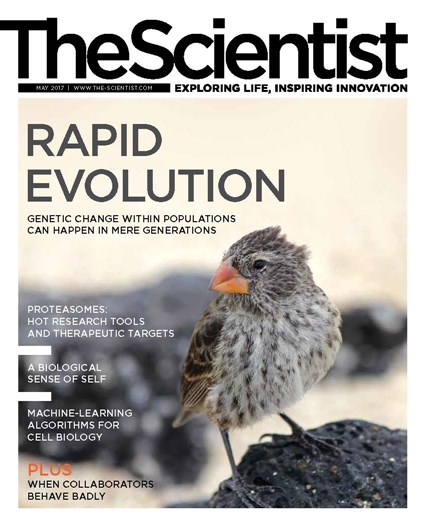 The Scientist May 2017 Cover