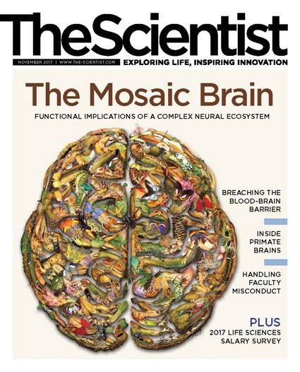 The Scientist November 2017 Cover