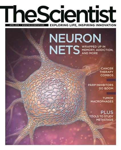 The Scientist April 2018 Cover